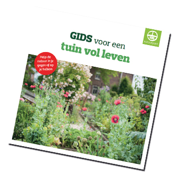 Download je gratis gids