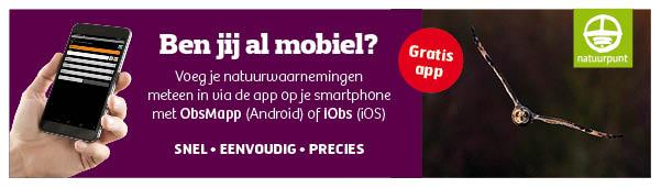 Banner Waarnemingen - mobiel