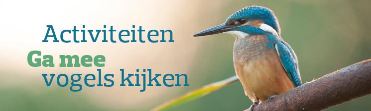 Ga mee op onze vogeluistapjes - Foto: Wim Dirckx