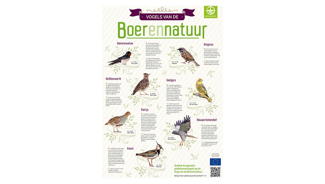 Vogels van de boerennatuur