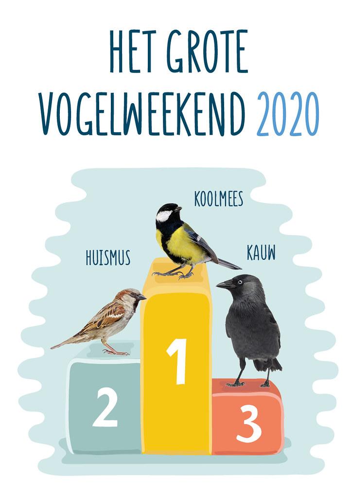 Top 3 Vogelweekend 2020