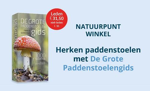 public://itr_longread/webbanner_paddenstoelengids_klein_2020.jpg