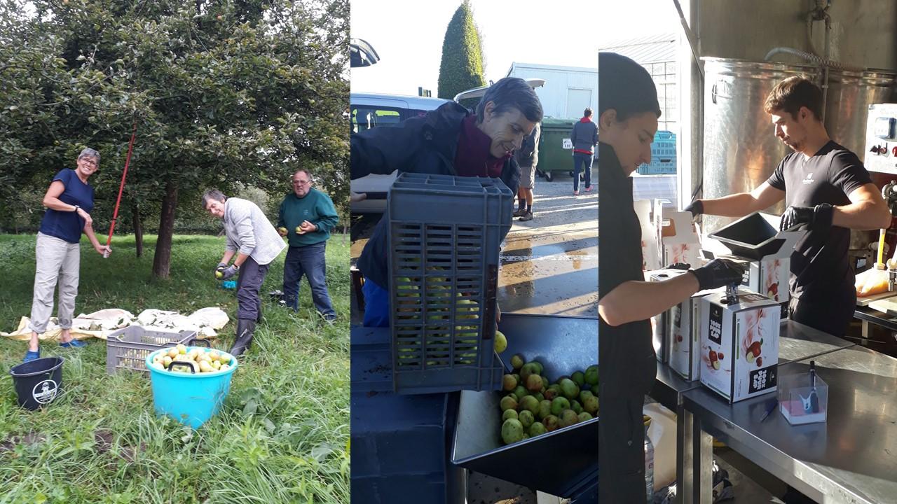 Het bio-appelsap van NP Grimbergen - Cuvée 2019