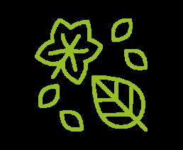 4. Begraaf jezelf onder bladeren
