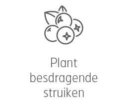Voedertips - Plant besdragende planten