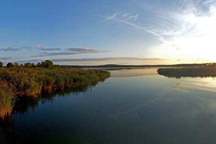 Les étangs de Belval-en-Argonne