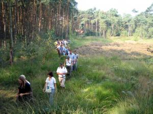 Zondagswandeling in Landschap De Liereman, doen!