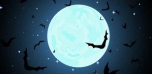 Nacht vleermuis