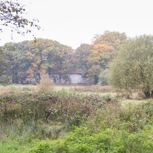 Natuurpunt Houthalen-Helchteren