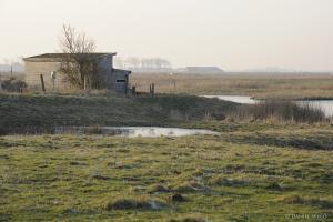 foto polders