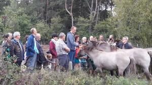 Grote grazerswandeling voor gezinnen in Landschap De Liereman, de moeite!