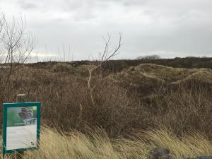 Natuurreservaat De Kijkuit
