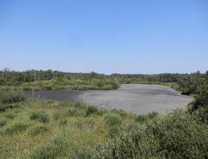 Klimaat in crisis, cursus in Landschap De Liereman