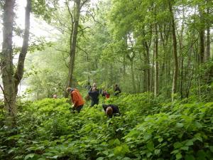 Klimaatwandeling in Landschap De Liereman