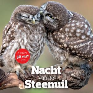 Nacht van de Steenuil