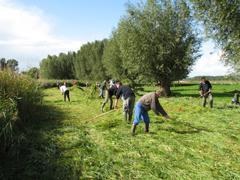 Natuurbeheer door vrijwilligers