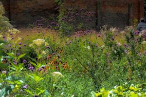 De natuurlijke (stads)tuin