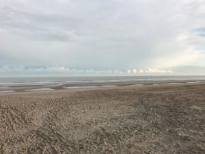 Rustige zee in de morgen