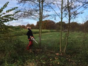 Open natuurwerkdag in Landschap De Liereman