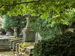 Oud kerkhof Hasselt