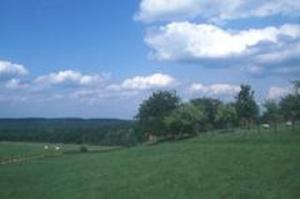 Roeselberg