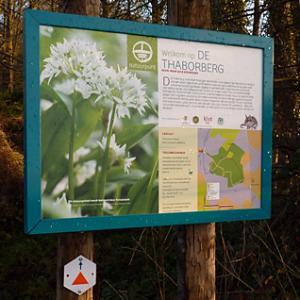 Infobord natuurreservaat Thaborberg