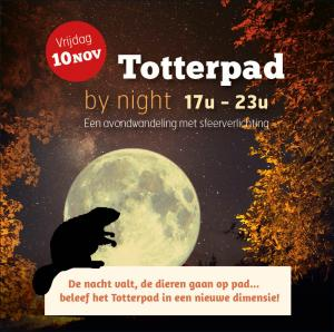 Totterpad by Night