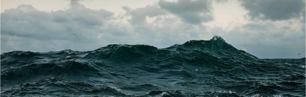 Marien beschermde gebieden op zee