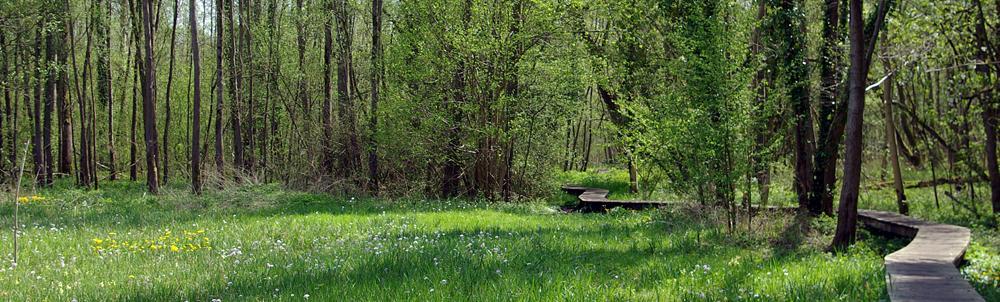 Molenbeekvallei