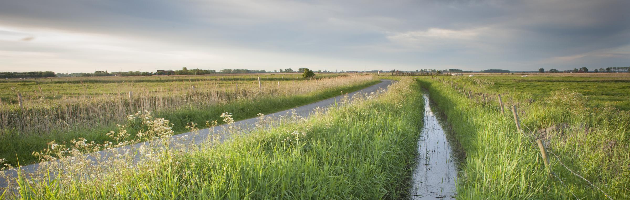 Uitkerkse polders