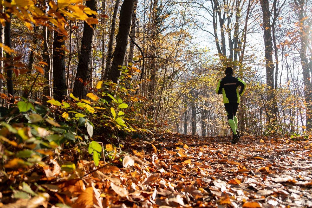 Joggen - Trailrunning