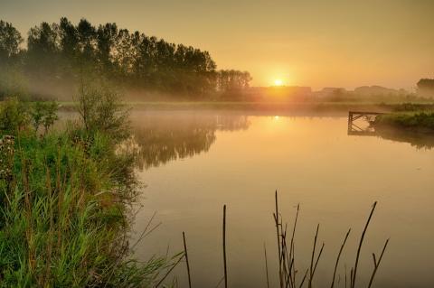 Natuurgebied van de Maand (2015/08): Demerbroeken