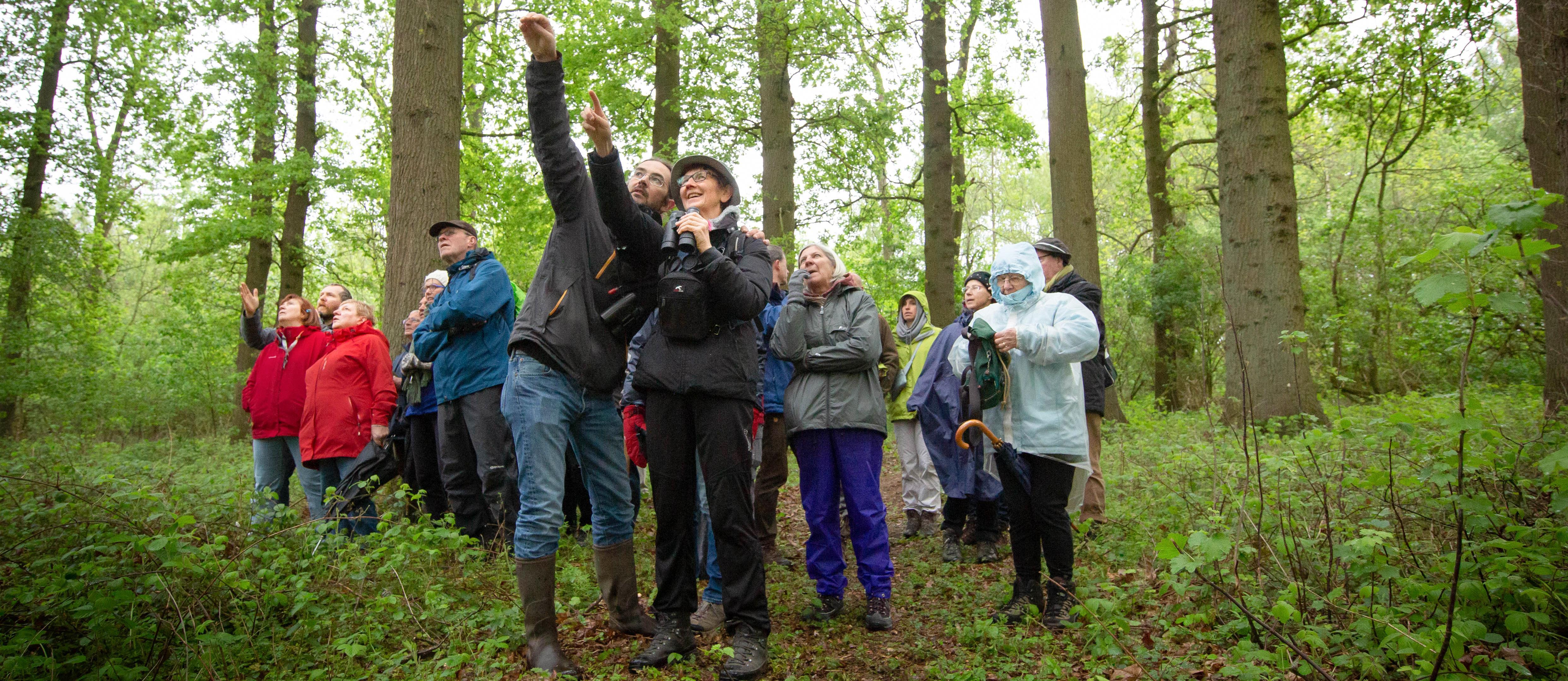 Katrien Buysse - Op ontdekking in het Kluizenbos
