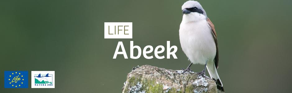 LIFE Abeek