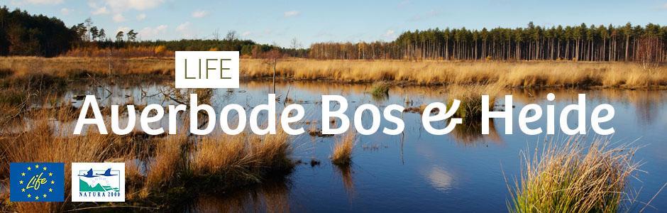 LIFE Averbode Bos & Heide