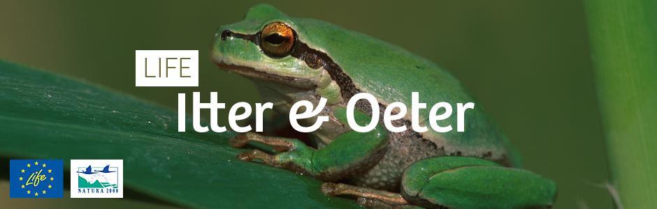LIFE Itter & Oeter