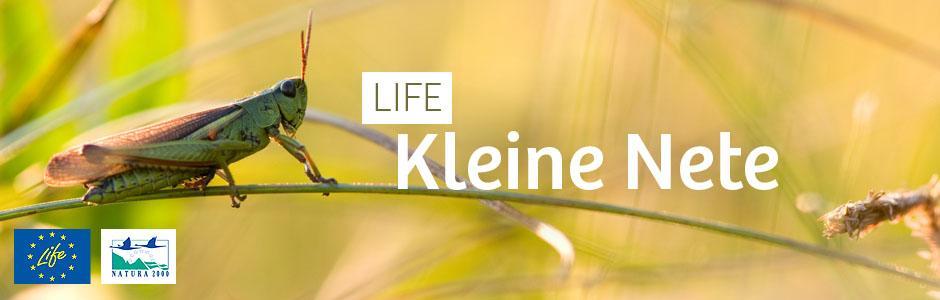 LIFE Kleine Nete