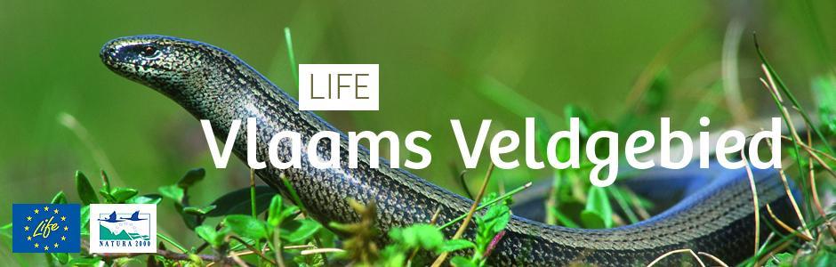 LIFE Vlaams Veldgebied