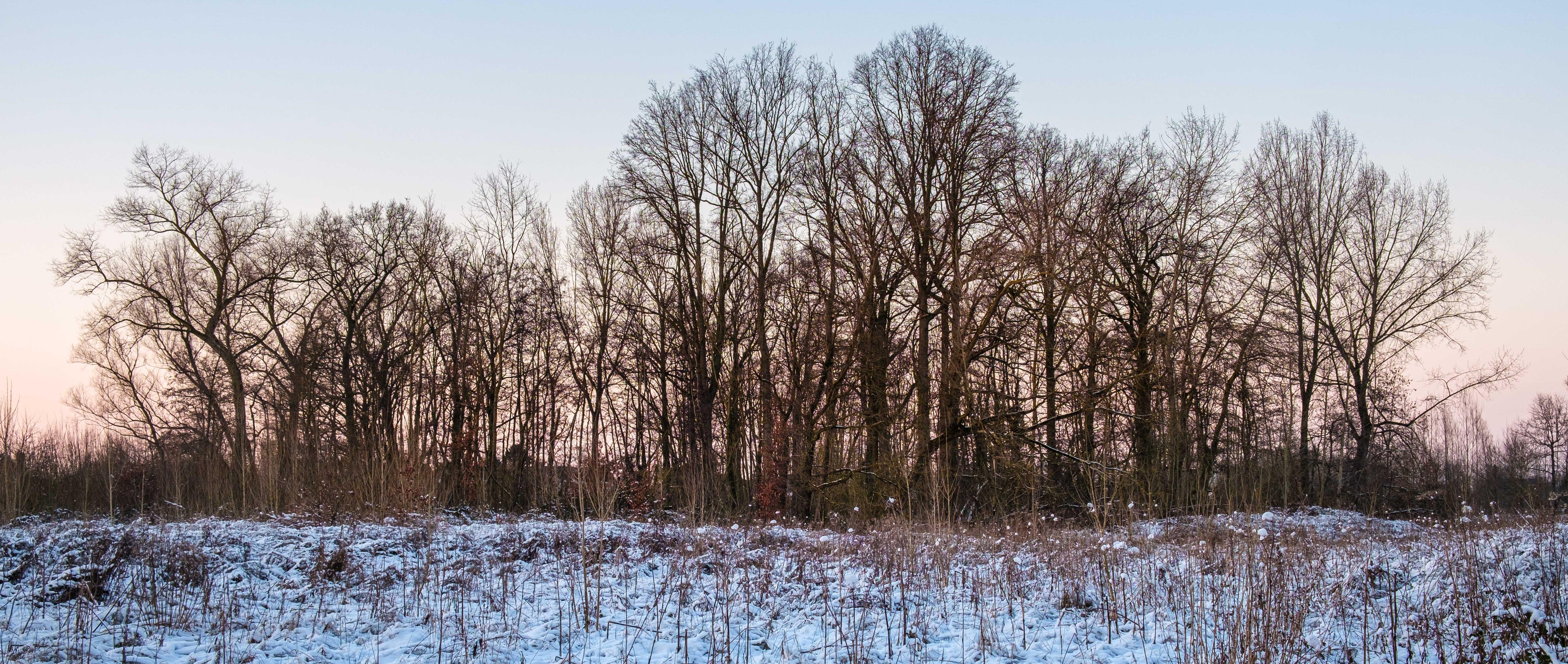 Geelstervallei te Lede, nabij de Molenbeek