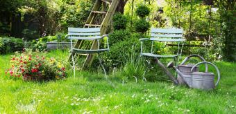 Vraag je gratis e-boek aan met 10 tips voor meer natuur in je tuin