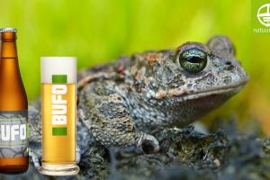 Drink Bufo en steun de paddenoverzetactie