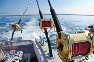 Natuurgebieden op zee ook noodzakelijk voor visserij