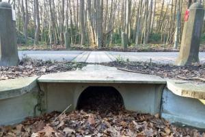 Paddentunnel