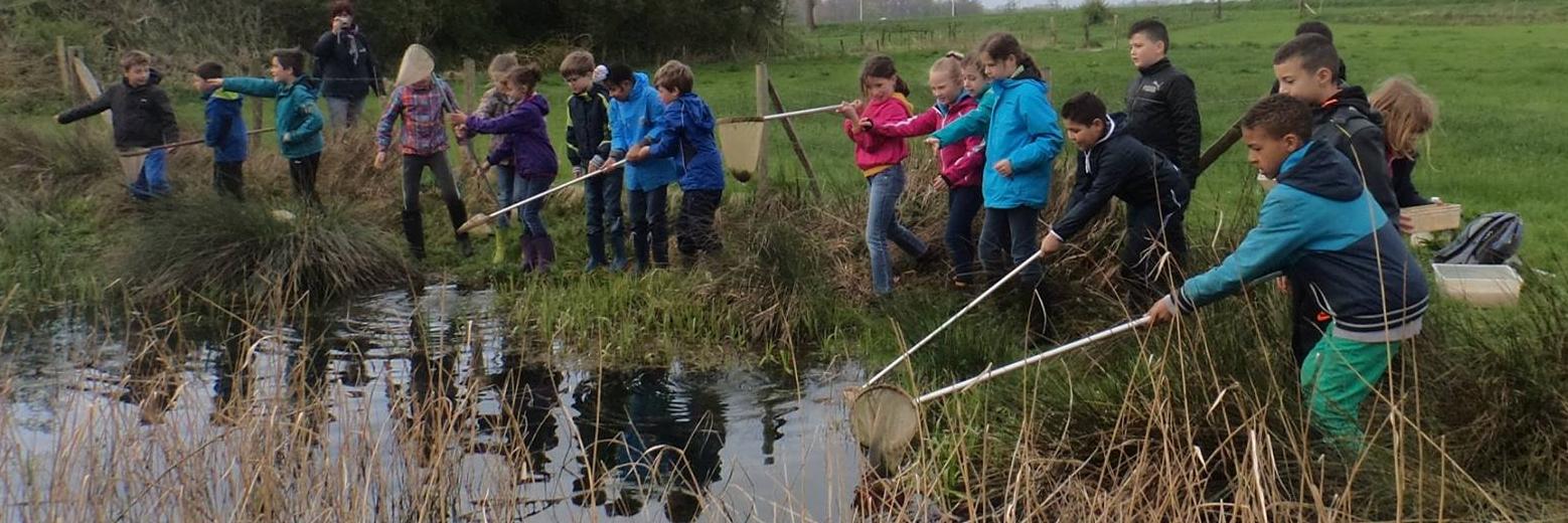 Kinderen doen aan natuurbeheer