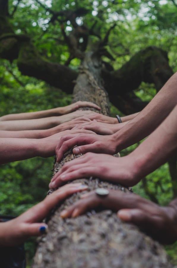 Vele handen …