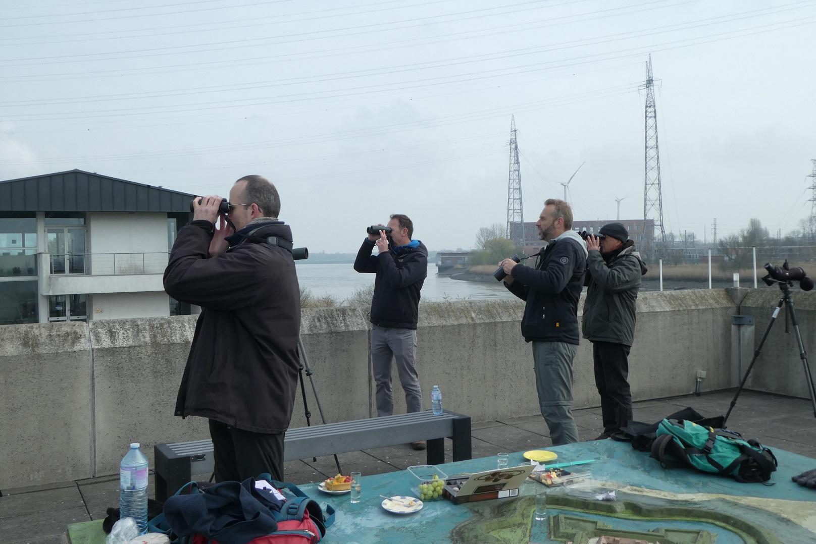 Trektellers Wouter, Kris, Ronan en Karel - foto: Erik De Keersmaecker