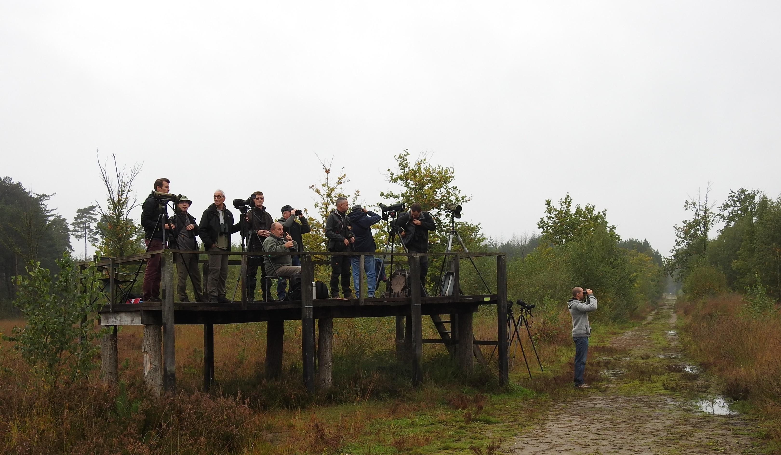 Trektelpost in de regen in Averbode Bos en Heide