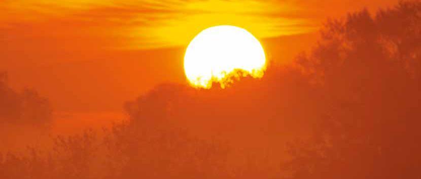 Doe mee met de groepsaankoop voor zonnepanelen van Natuurpunt