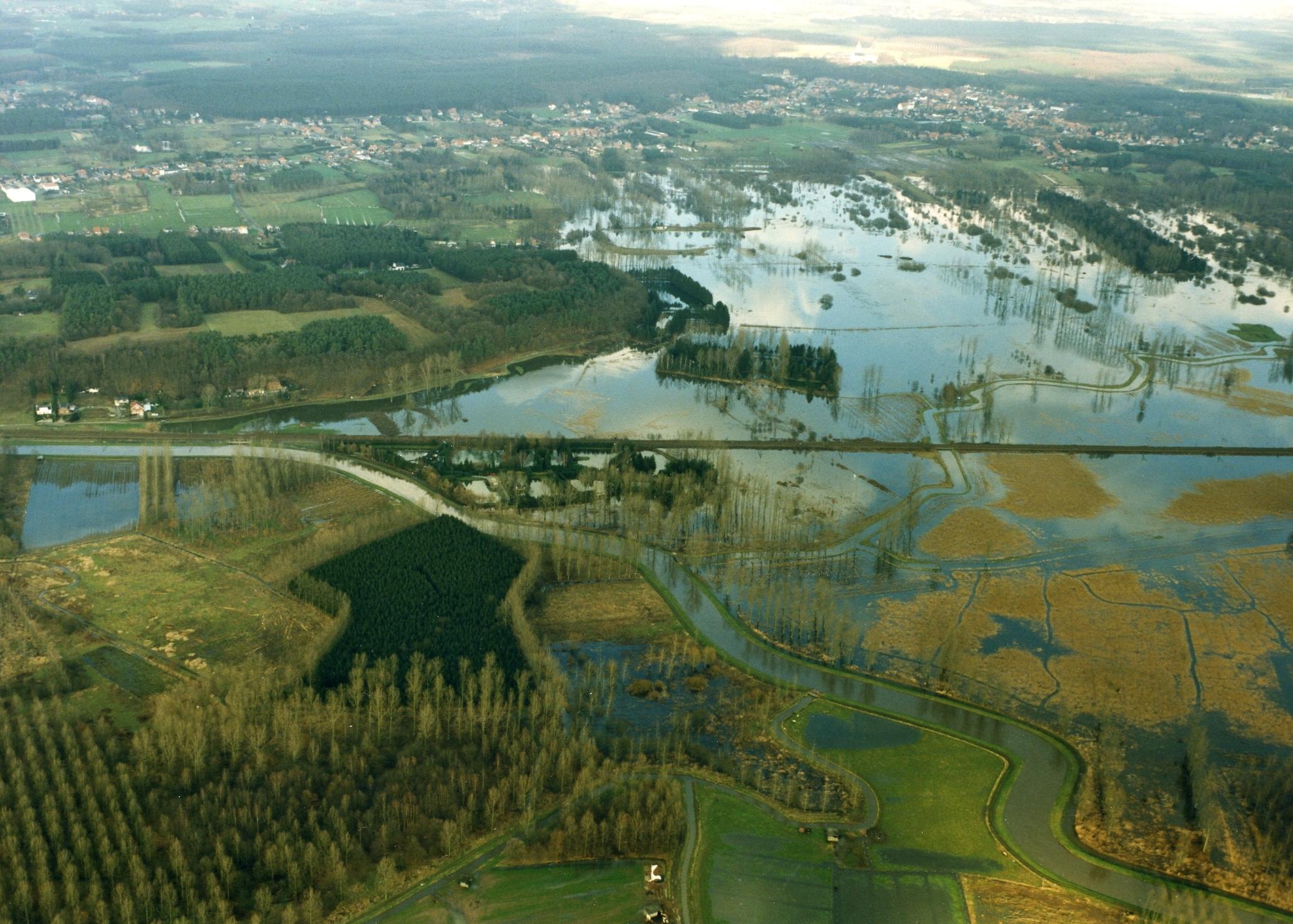 Water in de Demerbroeken tussen Zichem, Testelt en Averbode.
