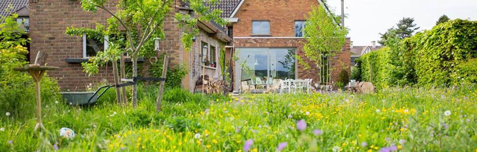 Natuurlijke tuin met hoger opgaande vegetatie